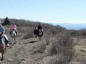 Rocky Hollow Horse Camp