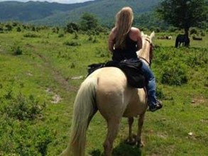 Horseback riding in Grayson Highlands